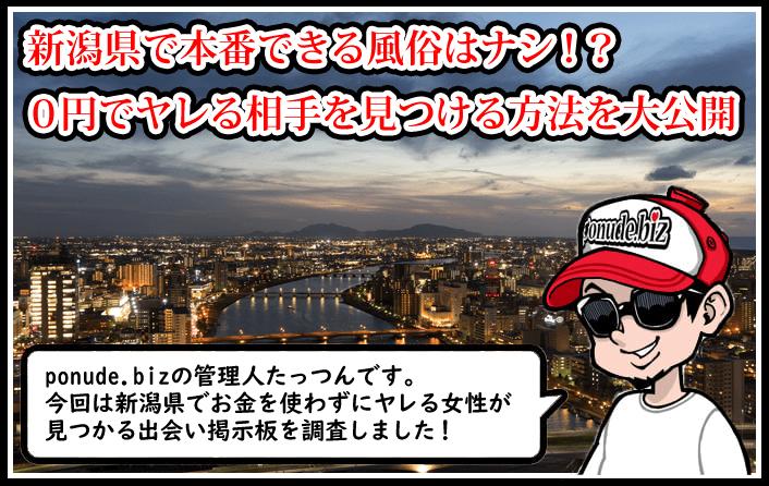 新潟で本番SEXができる裏風俗(デリヘル)はコスパ最悪!0円でヤレる素人女性と出会う裏技とは?